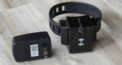 Grilletes electrónicos, listos para monitorear a imputados en RD