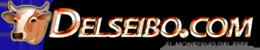 Delseibo.com